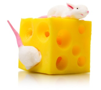 Stretchy Stress Cheese and Mice